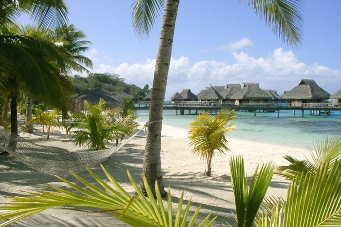 Polinesia, palme e sabbia rosa