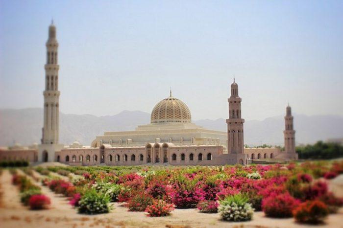 Alla scoperta dell'Oman a novembre