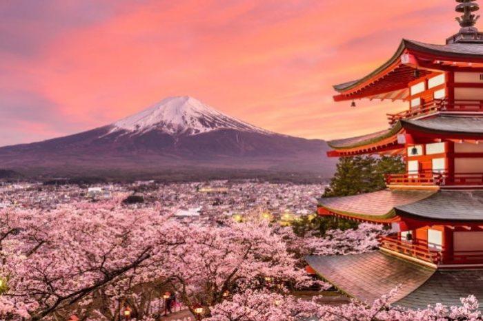 Tour di gruppo Esperienza Giapponese