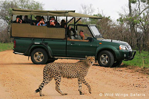 Tour Sud Africa Malaria Free